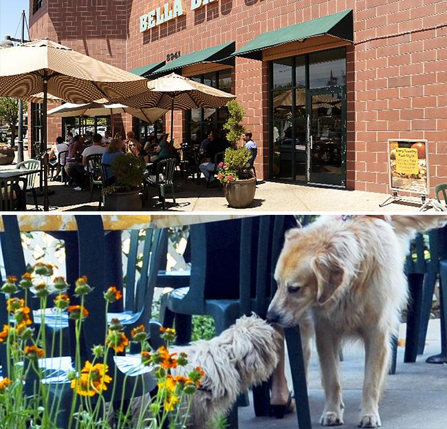 Bella Bru Cafe Sacramento