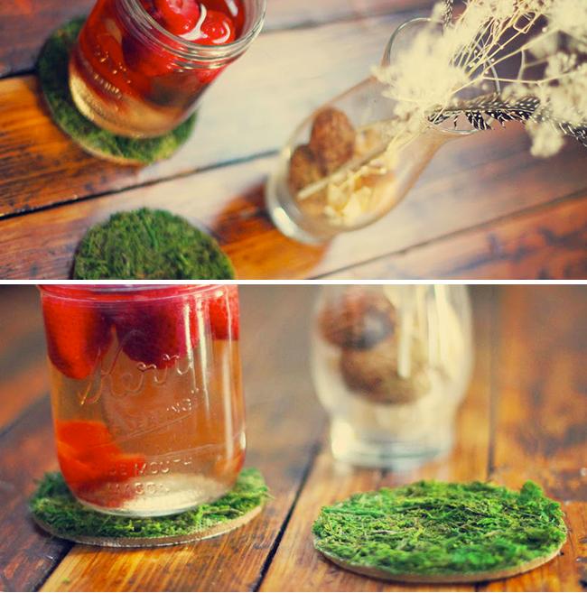 DIY Moss Coasters