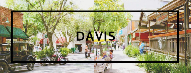 Davis Real Estate