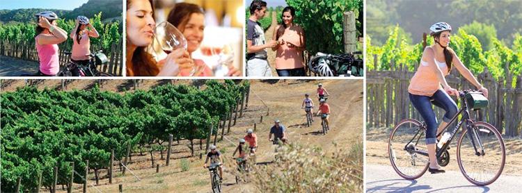 Napa Bike Tours