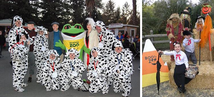 Sacramento Zoo's Boo at the Zoo