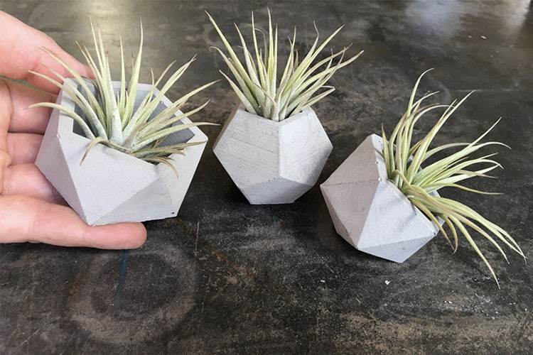 Geometric Planters | Gift Ideas for Her