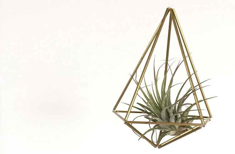 Geometric Hanging Vase | Gift Ideas for Her