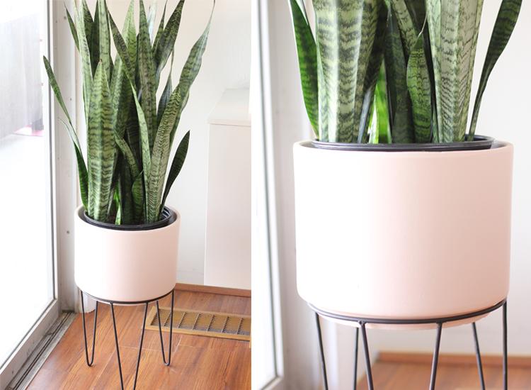 DIY Pink Planter