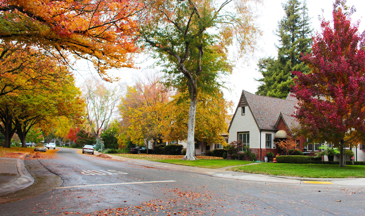 The 9 Hottest Sacramento Area Neighborhoods for Young Professionals: Land Park