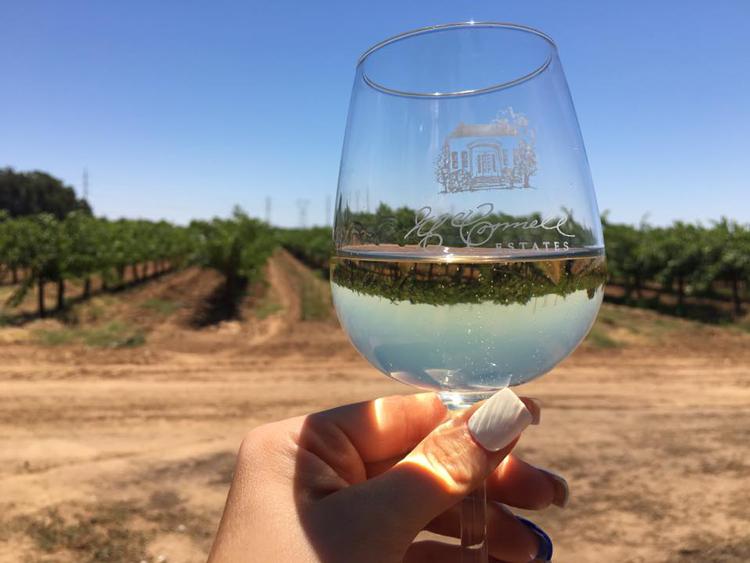 McConnell Estates Winery Mini Blues Festival Elk Grove, CA