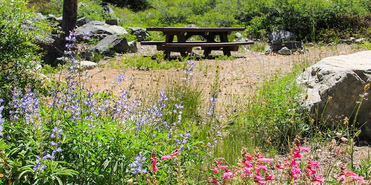 Lakes Basin Campground