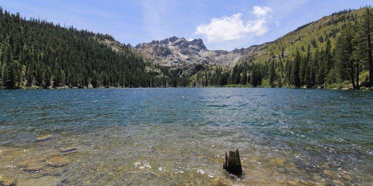 Sardine Lake Campground
