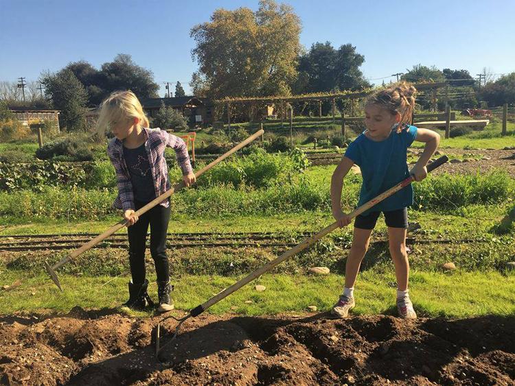 Soil Born Farms Rancho Cordova, CA