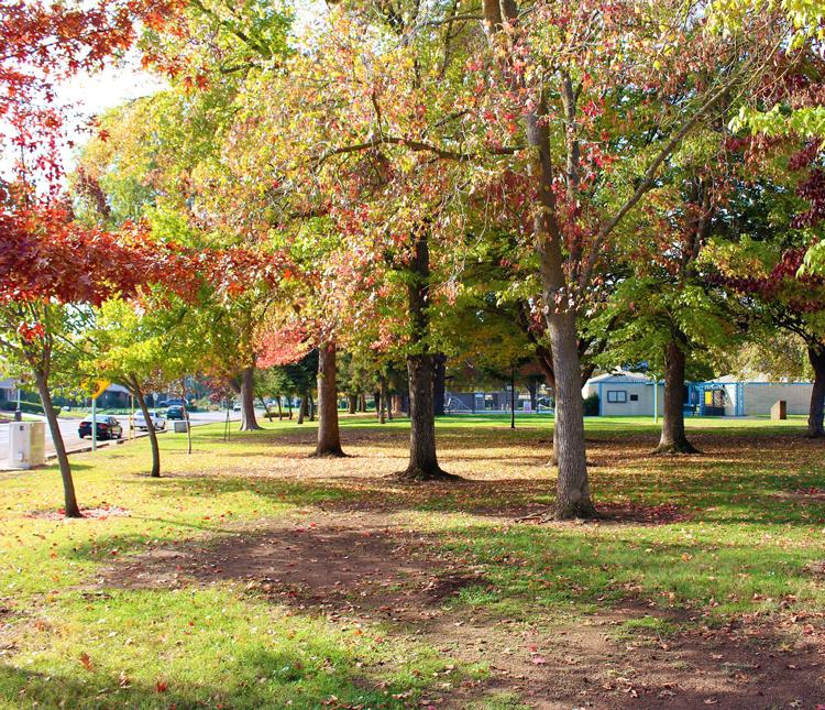 College Greens Sacramento, CA