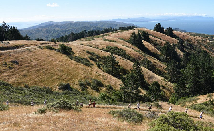 Dipsea Race Dipsea trail Mill Valley Marin County