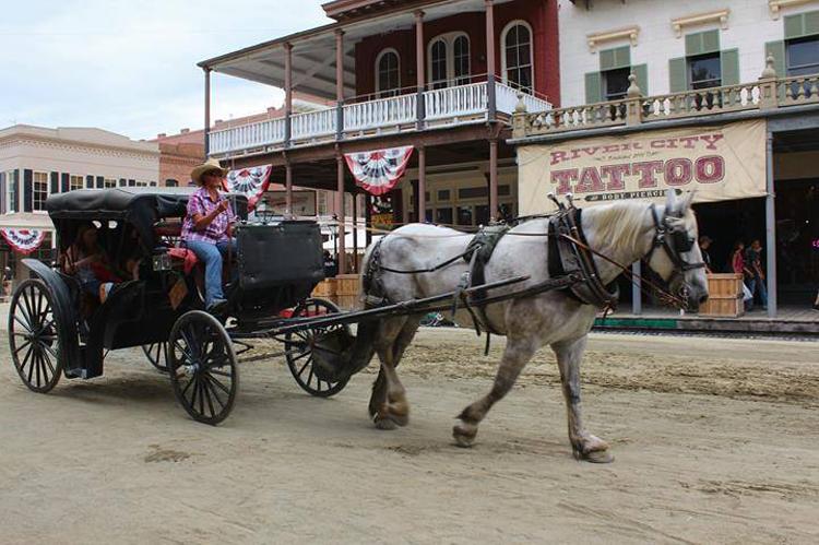 Horse-Drawn Carriage Sacramento, CA