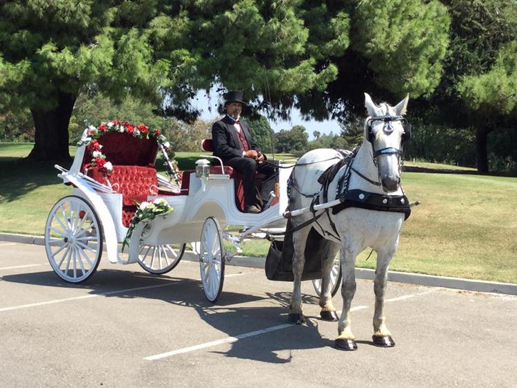 Top Hand Ranch Horse-Drawn Carriage Sacramento, CA