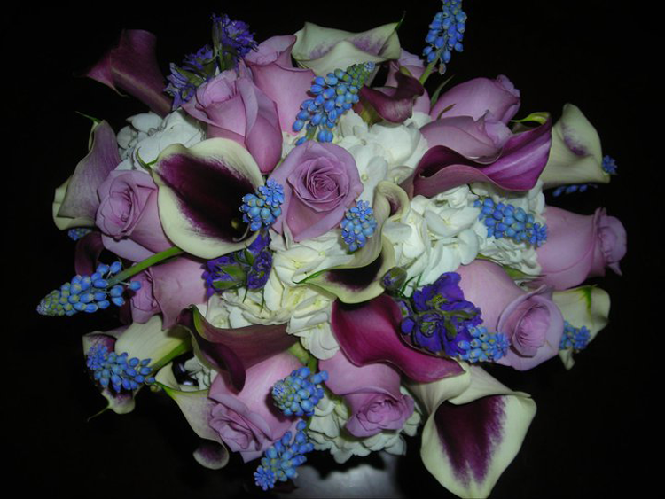 Auburn Blooms Florist & Gifts | Auburn, CA
