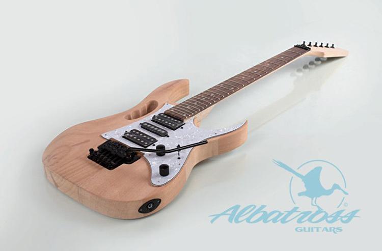 DIY Electric Guitar Kit By Albatross Guitars